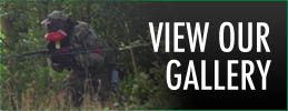 View our Paintballing Gallery